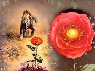 Ned Dameron - The Rose - obrazek