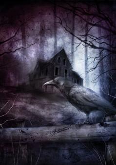 Black House - obrazek