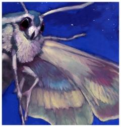 Rick Berry - Black House - Night Moth - obrazek