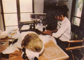 Kathie Clarkpracuje nad kostiumem Cujo - obrazek