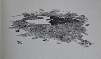 Bernie Wrightson - Cycle of Werewolf 31 - obrazek