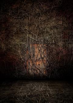 """Revival"" - Small Door - François Vaillancourt - obrazek"