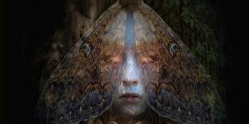 Limitowany plakat Beautiful Creatures of Kings w sprzedaży - obrazek