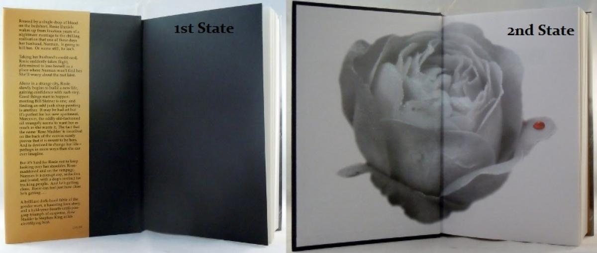 """""""Rose Madder"""" - Dwa stany - wyklejka książki - obrazek"""