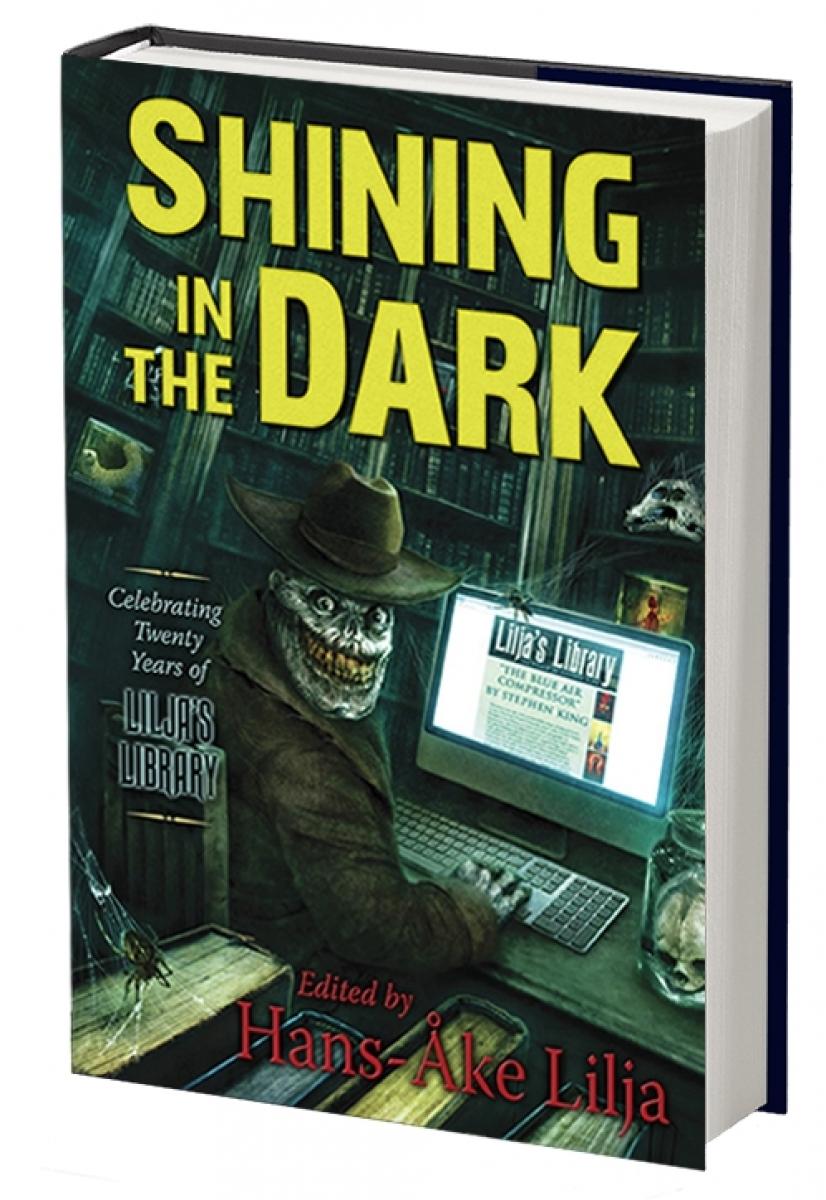 Shining in the Dark - wizualizacja - obrazek