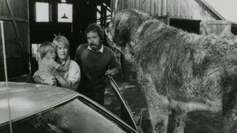 Reżyser Lewis Teague instruuje Dannyego Pintauro i Dee Wallace na planie Cujo - obrazek