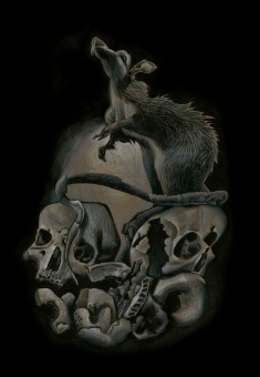 Nocna Zmiana - DaveMcKean - Cmentarna szychta - obrazek