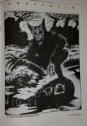 MidnightGraffiti_1989-spring_7