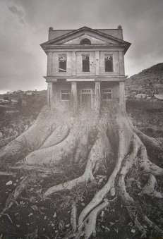 Jerry Uelsmann - Salems Lot 05 - obrazek