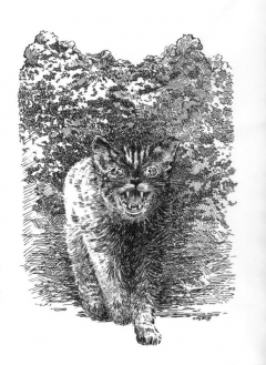 Mark Geyer - Pet Sematary 5 - obrazek