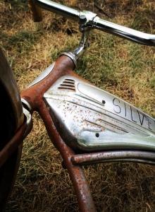 Silver - rower Billa Denbrough (zdjęcie Andy Muschetti) - obrazek