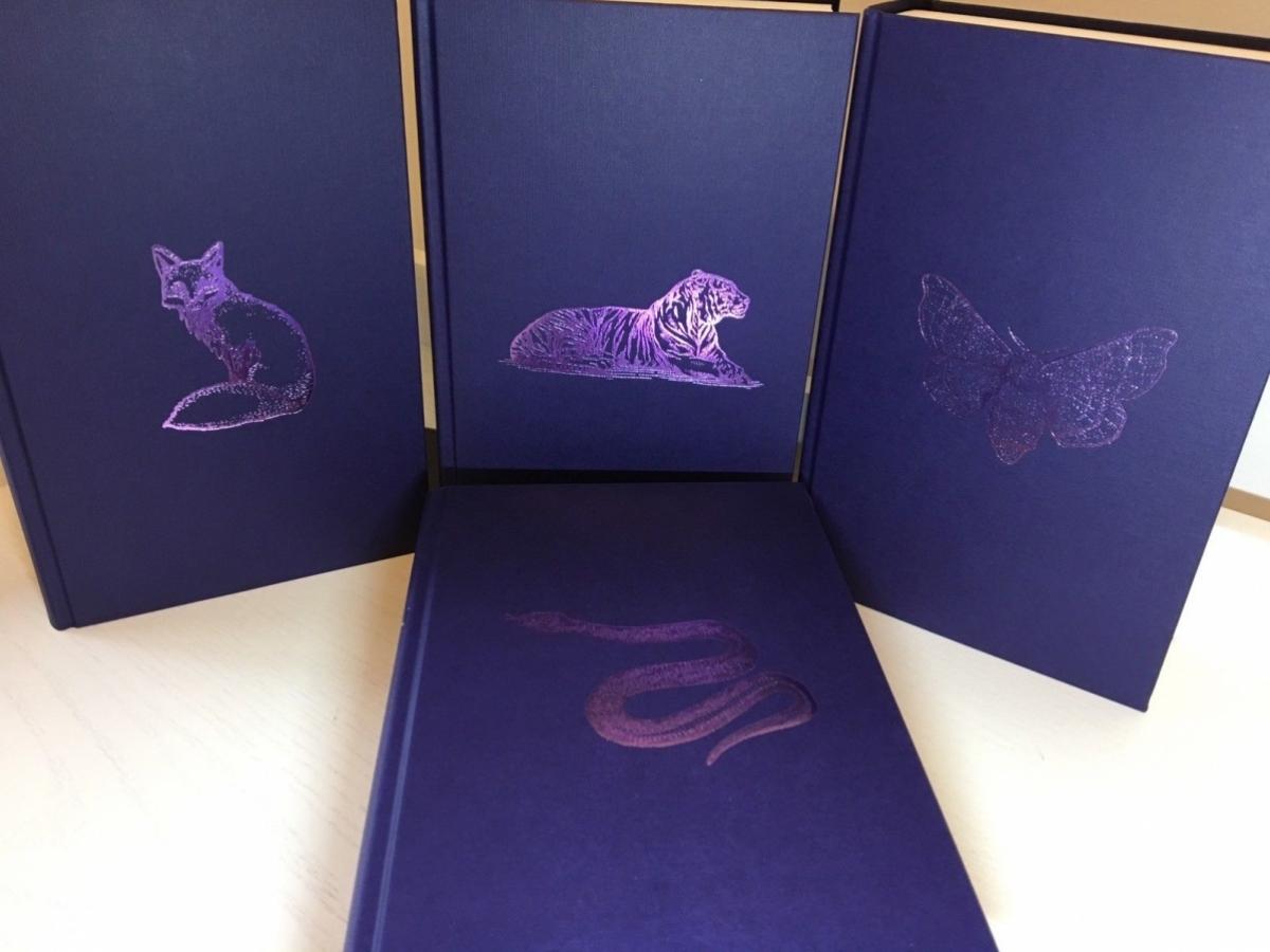 Dostępne warianty zwierząt fioletowych w wariantach WHSmiths - obrazek