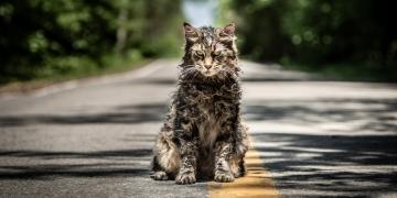 Smętarz dla zwierzaków (2019) - zdjęcia z filmu - obrazek