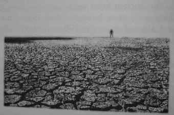 Michael Wheelan - The Dark Tower VII 50 - obrazek