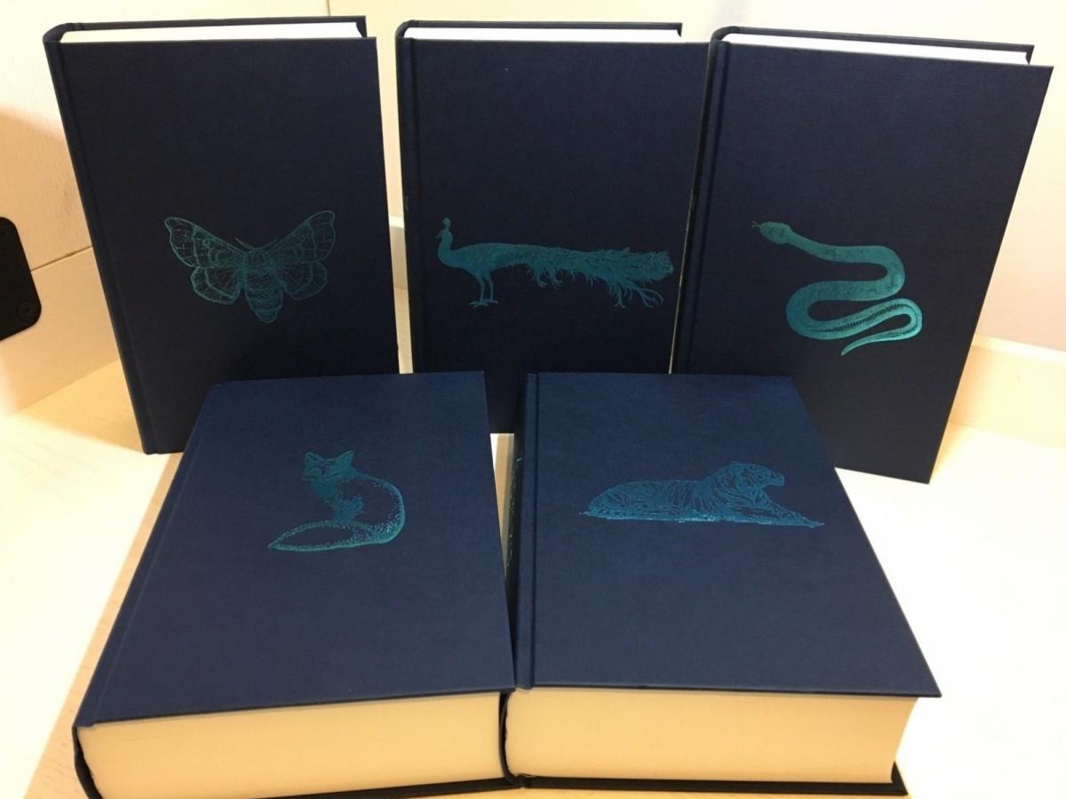 Dostępne warianty zwierząt niebieskich - paw dostępny w wariancie Tesco - obrazek