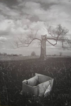 Jerry Uelsmann - Salems Lot 06 - obrazek