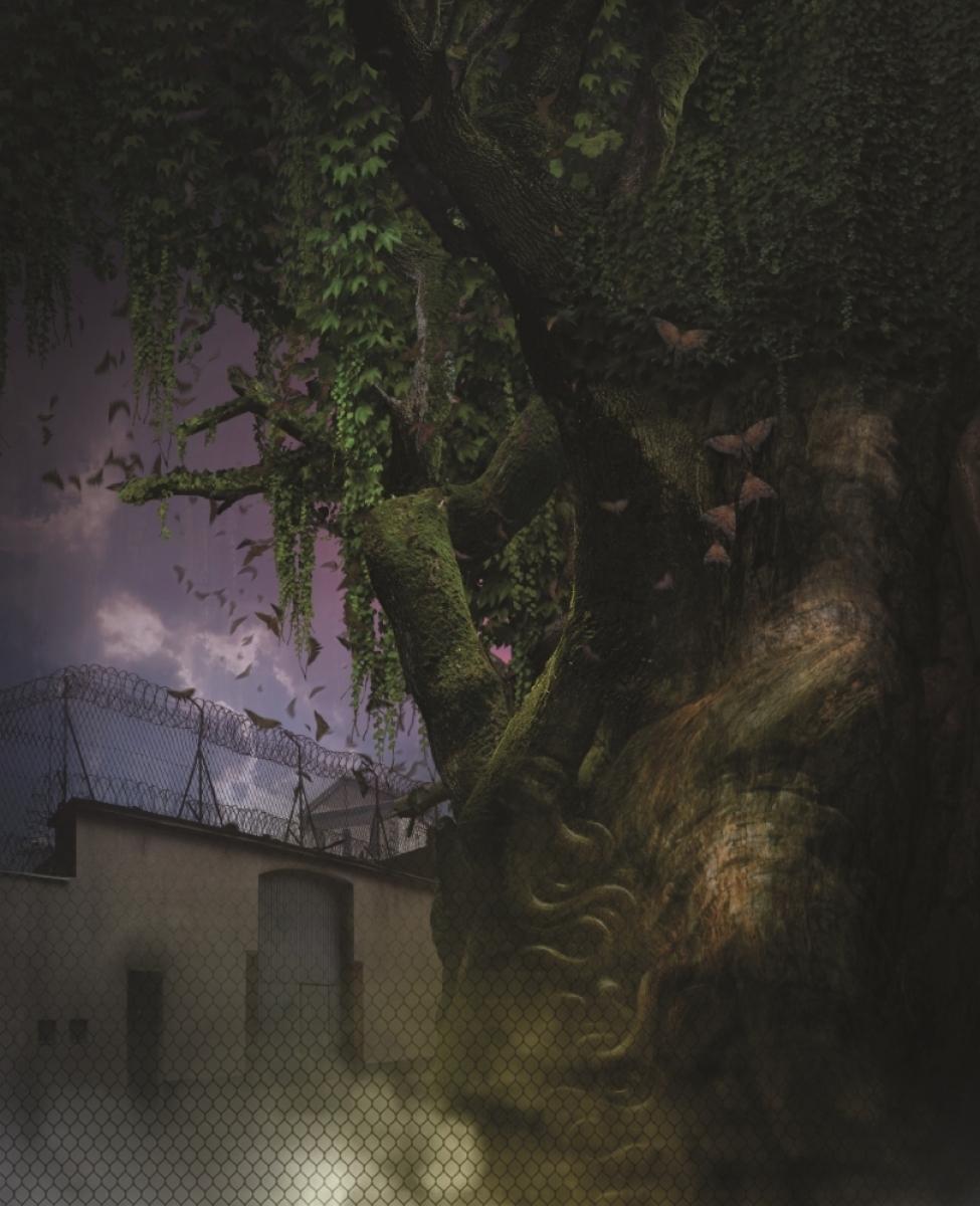 """""""Śpiące królewny""""  - ilustracja Ryszard Wojtyński - obrazek"""